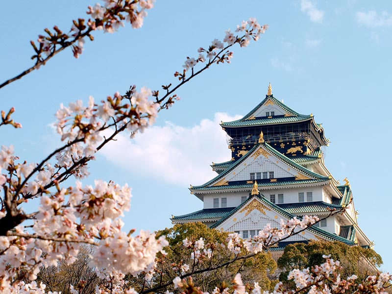 桜_5-04_大阪城